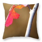 Apparently It's Poison Oak Throw Pillow