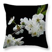 Apple Blossom 1015 Throw Pillow