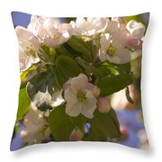 Apple Blossoms 3 Throw Pillow