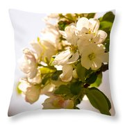 Apple Blossoms 9 Throw Pillow