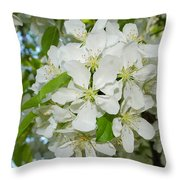 Apple Blossoms On The Trail Throw Pillow