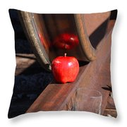 Apple Juice Railroad 4 Throw Pillow