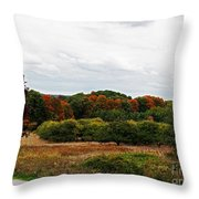 Apple Orchard Gone Wild Throw Pillow