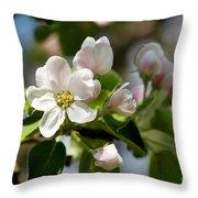Apple Tree Flowers Throw Pillow