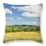 Apple Trees And Hay Field In Summer Maine Throw Pillow