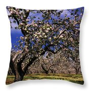 Apple Trees In An Orchard, County Throw Pillow