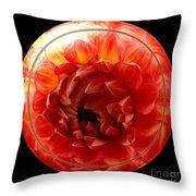 Apricot Orange Dahlia Under Glass Throw Pillow