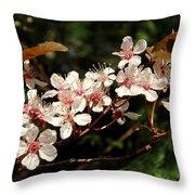 April Plum Blossom Throw Pillow