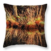 April's Pond Throw Pillow