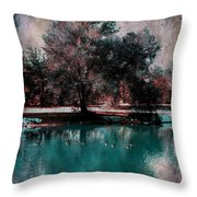 Aqua Pond Throw Pillow