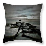 Aquatic Pathway Throw Pillow