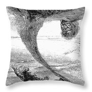 Arabian Nights, 1903 Throw Pillow by Granger