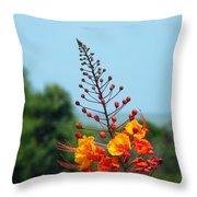 Aransas Nwr Texas Coast Throw Pillow