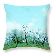 Aransas Nwr Texas Throw Pillow