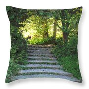 Arboretum Steps Throw Pillow