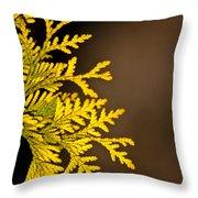Arbovitae Fan 1 Throw Pillow