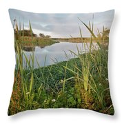 Arcata Marsh Throw Pillow