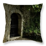 Arched Doorway With Iron Grate Throw Pillow