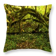 Arches In The Rainforest Throw Pillow