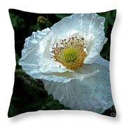 Arctic Poppy Throw Pillow