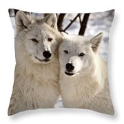 Arctic Wolves Close Together In Winter Throw Pillow