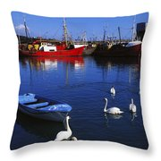 Ardglass, Co Down, Ireland Swans Near Throw Pillow
