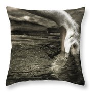 Are You Getting This Throw Pillow