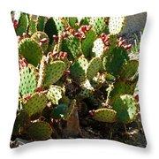 Arizona Prickly Pear Cactus Throw Pillow