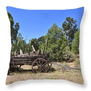 Arizona Wagon Throw Pillow