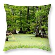 Arkansas Lake With Cypresses Throw Pillow