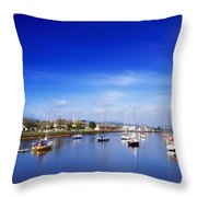 Arklow, River Avoca, County Wicklow Throw Pillow