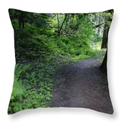 Around Another Bend In The Trail On Mt Spokane Throw Pillow