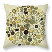Arrangement Of Diatoms Throw Pillow