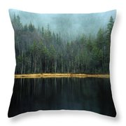 Arrow-straight Evergreens Are Reflected Throw Pillow