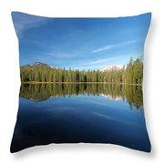 Arrowhead Reflection Throw Pillow
