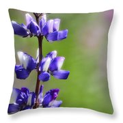 Arroyo Lupine  Throw Pillow