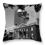 Art Gallery Of Ontario Throw Pillow