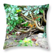 Art Squirrel Throw Pillow