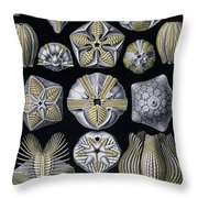 Artforms Of Nature Throw Pillow