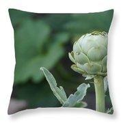 Artichoke In The Garden Throw Pillow