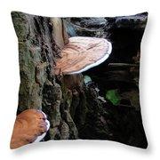 Artist Conk Mushroom  Throw Pillow