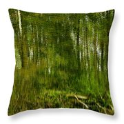 Artistic Water Reflections Throw Pillow