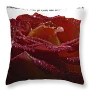 As I Have Loved You Throw Pillow