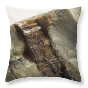 Asbestos Throw Pillow