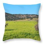 Ash Creek Valley II Throw Pillow