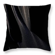 Ashes With Night  Throw Pillow