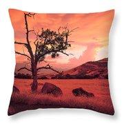 Ashland Sunset Throw Pillow