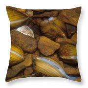 Asiatic Clam Throw Pillow