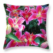 Asiatic Lillies Throw Pillow by Randall Weidner