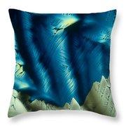 Asparagine Throw Pillow